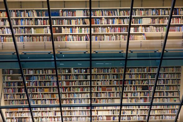 Kirjaston kirjaseinää